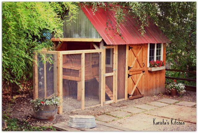 Chicken coop and garden shede