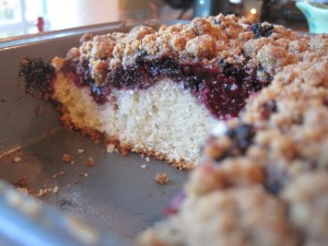 Blackberry Breakfast Cake withStreudel Topping